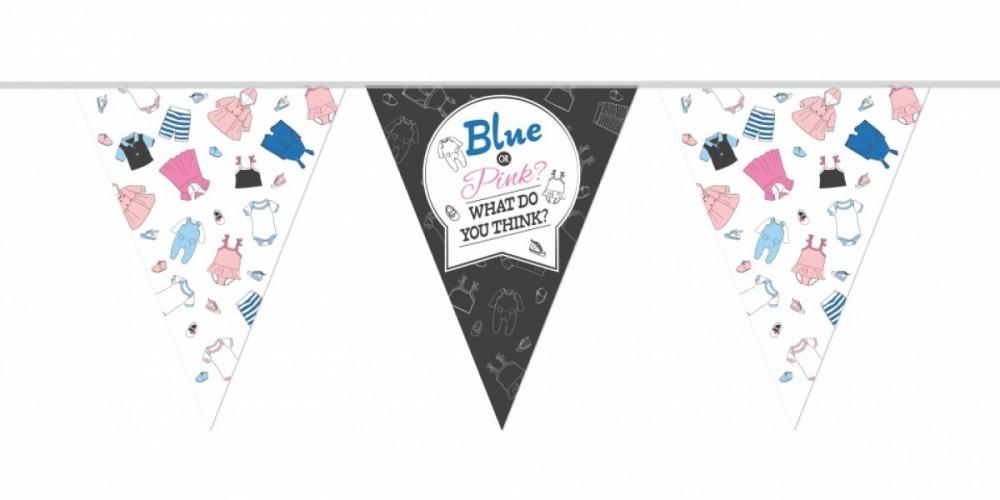 Vlaggenlijn Gender Reveal Blue or Pink 10 mtr